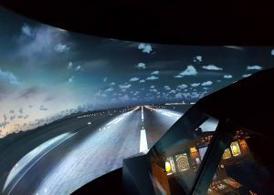 simulation projection screen